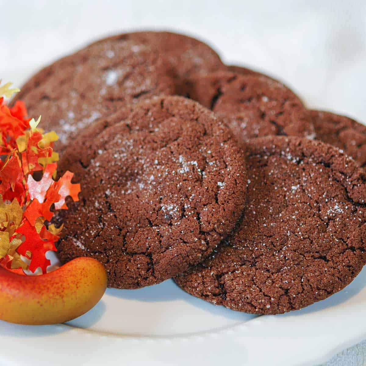 Chocolate sugar cookies on a white plate.